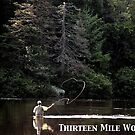 Thirteen Mile Woods Poster by Wayne King