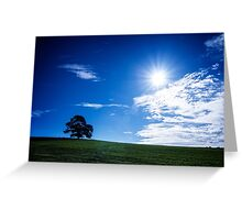 Lone Tree in the Sun Greeting Card