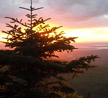 Cadillac Mountain Sunset by Beclecto