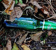 Bottle of beer with in the leaves. ( man made and Nature series) by Karen  Betts