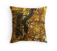 Ozark Mountain Gold Throw Pillow