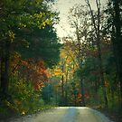 Ozark Mountain Road by Lisa G. Putman