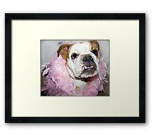 Pink boa Framed Print