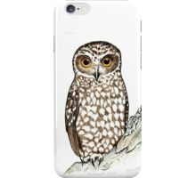 Boobook Owl iPhone Case/Skin