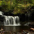 A Hint of Autumn by Lori Deiter