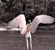 Water Angel by David VanHattem
