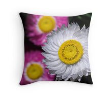 In white and pink Throw Pillow