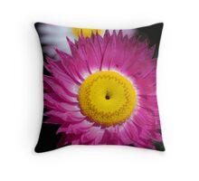 Pink flurry Throw Pillow