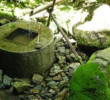Zen garden by Zeljka