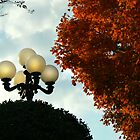 Lamp Post in Autumn by Lisa G. Putman