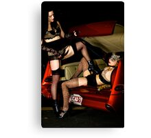 CarBoot Cuties Canvas Print