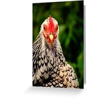 Chicken Stare Greeting Card