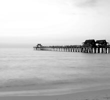 The Pier in 30 seconds by ggpalms