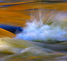 River by Silke Magino