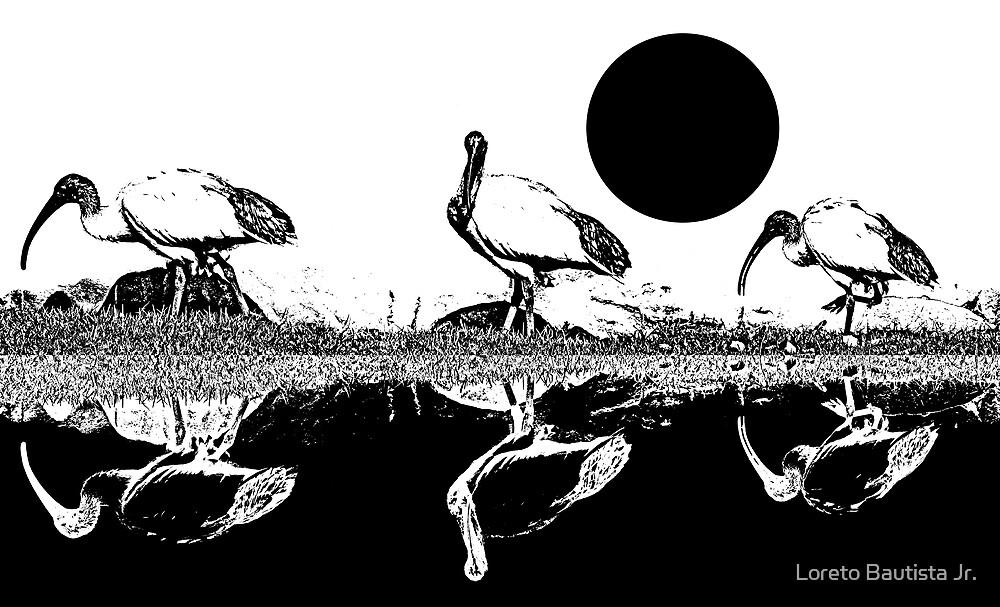 ibis by Loreto Bautista Jr.
