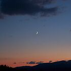 Crescent Moon by Fred Kamps