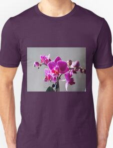 Purple Orchid Unisex T-Shirt