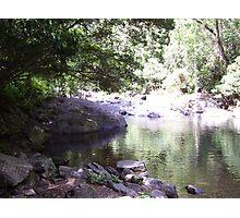 Tropical Sanctuary Photographic Print