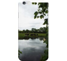 Moody Cows iPhone Case/Skin
