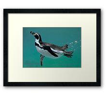 Underwater Ballet Framed Print