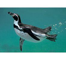 Underwater Ballet Photographic Print