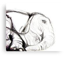 Elephant Evolution Canvas Print