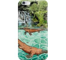 Platypus Falls iPhone Case/Skin