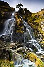 Dovedale Cascade by David Lewins
