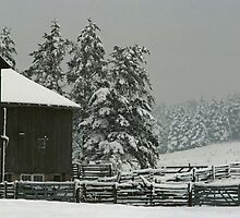 Barn and Winter Storm by DMHImages