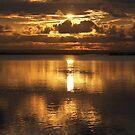 Golden sunset by citrineblue