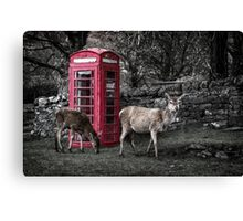Deers @ Red Telephone Box (Kiosk 6) Canvas Print