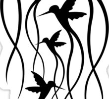Humming Birds Sticker