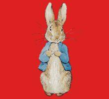 Peter Rabbit One Piece - Long Sleeve