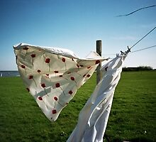 Lomo - Laundry by Thomas Spiessens