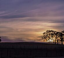 New Years Sunset by Elysian Photography