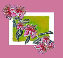 Feijoa Blossoms Galore by Sue H