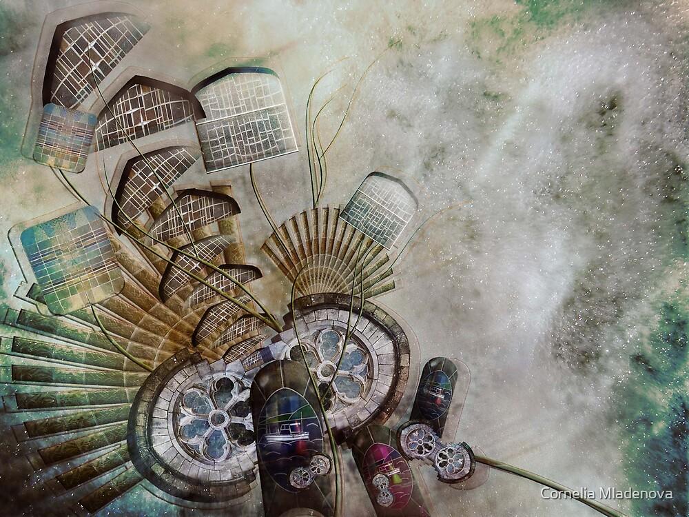 Shapes by Cornelia Mladenova