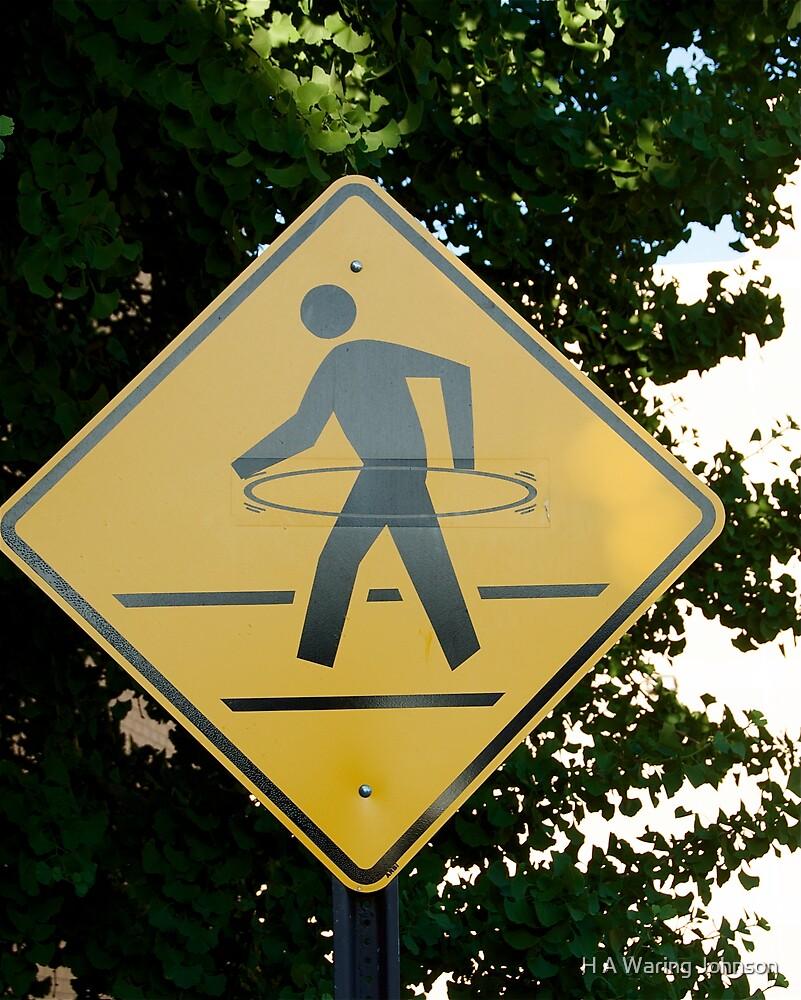 Hula Hoop Crossing by H A Waring Johnson