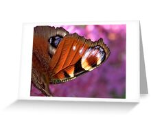 Peacock wing! Greeting Card