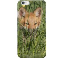 Be Vewy Vewy Quiet... Hunting Wabbits iPhone Case/Skin
