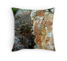 OLD WITCH OF THE ISLAND Throw Pillow