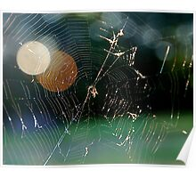 Colorful Spider Web Poster