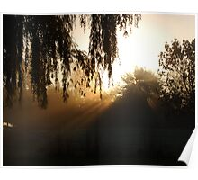 Veiled Dawn Poster