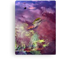 Falls mirror Canvas Print