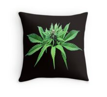 Top Head Cropped  Throw Pillow