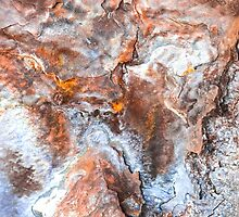 Are You Sure This Is Rust by Scott  Cook
