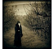 Come, eat from my orchard... Photographic Print