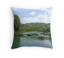 IN BLUE  Throw Pillow