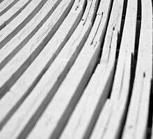 White Curves by William Fehr
