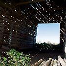 View Through Falling Down Barn by H A Waring Johnson